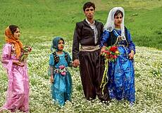 Traditional wedding in Kurdistan