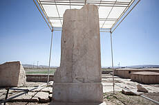 The Winged Figure of Pasargadae